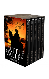Cattle Valley Box Set 6